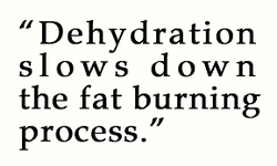 Dehydration and fat burning