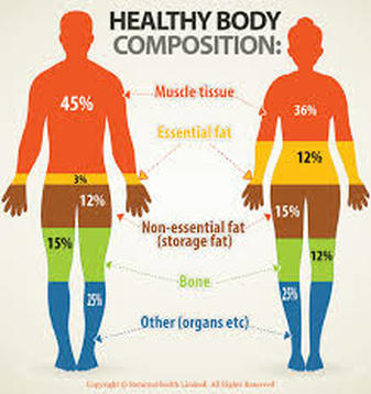 Healthy body composition
